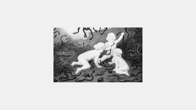 Anthurus d'Archer - Rêveries 3