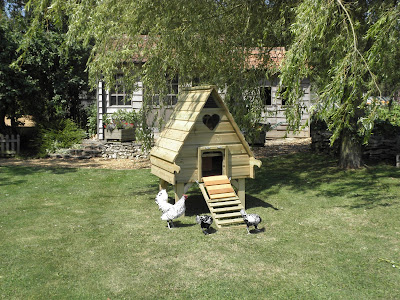 Long Legged Timber Hen Houses