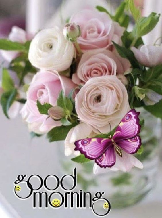 Good Morning with Flowers and Butterfly