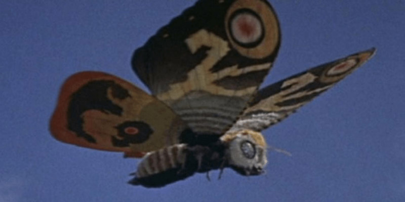 mothra review