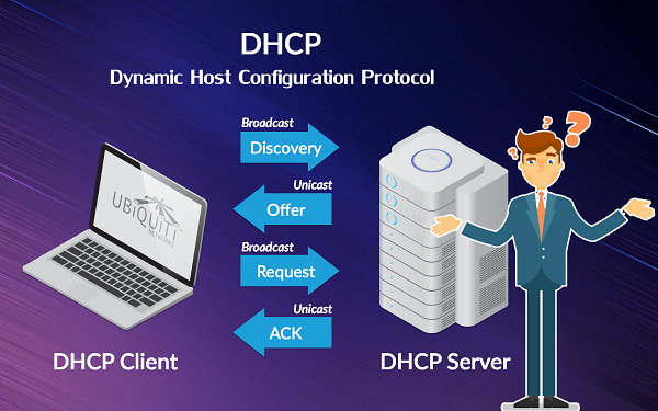 What is DHCP and how it work ?