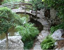 Gone Gardening Zilker Botanical Garden