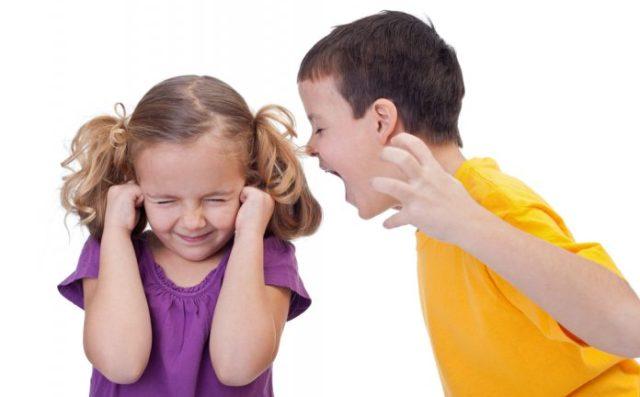Conduct Disorder (Pengertian, Ciri, Jenis, Penyebab dan Terapi Pengobatan)