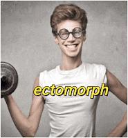 صفات نوع الجسم  اكتومورف