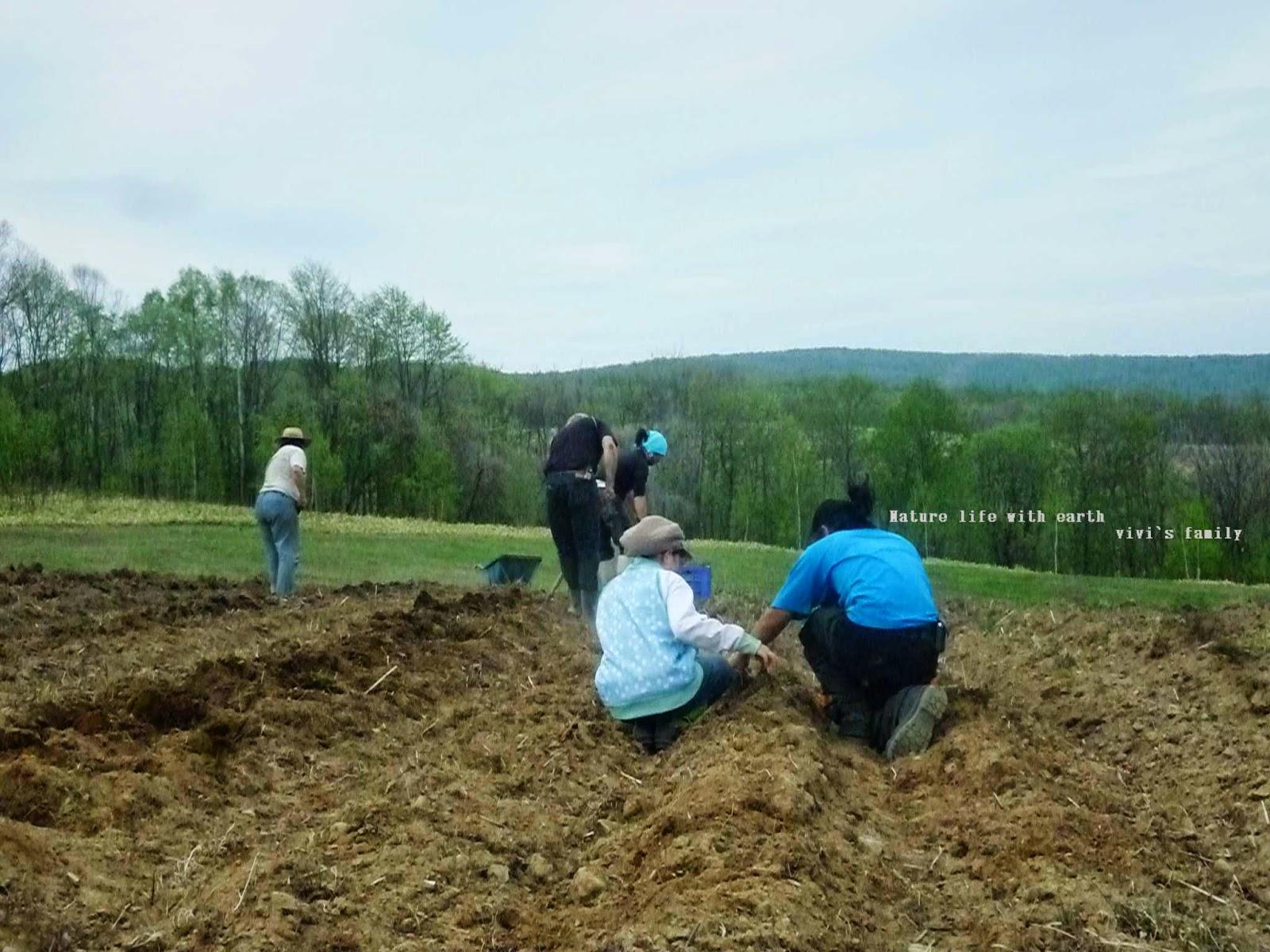我們務農那是因為我們想要每天親手撥開野草,好看見我們生存的意志力,