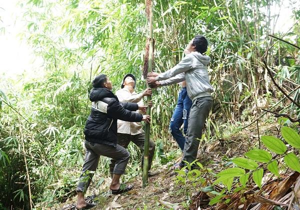 Ðộc đáo Tết Khỉ của người Ca Dong ở Kon Tum