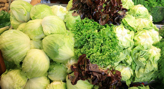 A mixture of different lettuce species on display on a table