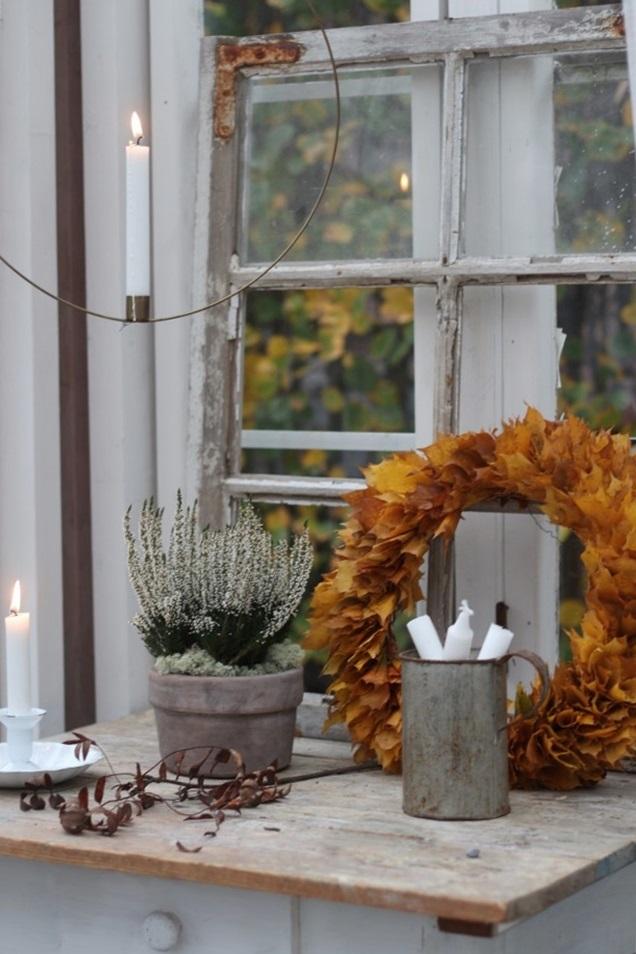 kesähuoneen syksy, kesähuone, syyspuutarha, syksyinen kesähuone, växthus, greenhouse, autumnstyle, colorful autumn garden