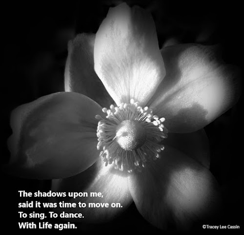 Black and white flower quote