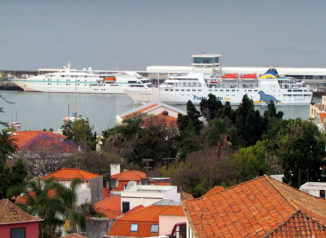 Lobo Marinho ferry today in Funchal port bigger than Tare Moama cruise ship