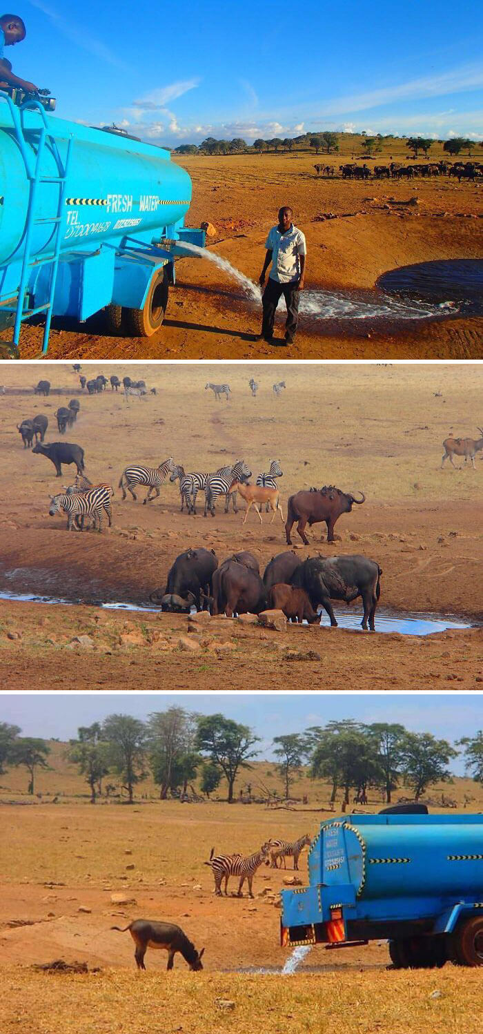 30 Heartwarming Photos That Restored Our Faith In Humanity - Every Day This Man Drives Hours In Drought To Provide Water To Thirsty Wild Animals In Kenya