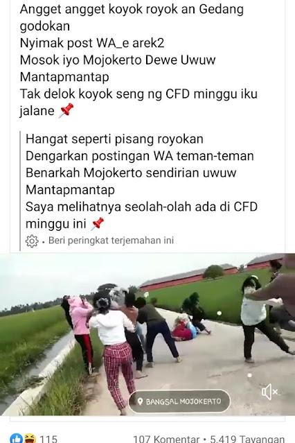 Viral Cabe-cabean Tawuran di Mojokerto