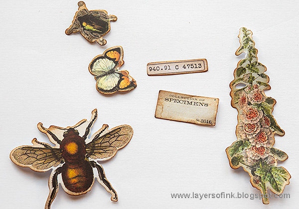 Layers of ink - Vintage Nature Notebook Tutorial by Anna-Karin Evaldsson. With Tim Holtz Field Notes.
