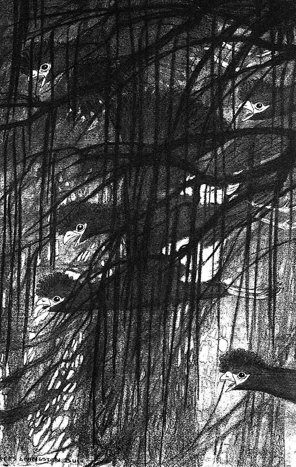 a Charles Livingston Bull illustration of flying jungle birds