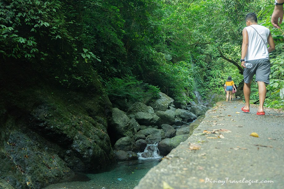 A tiny waterfall-like stream along the trail