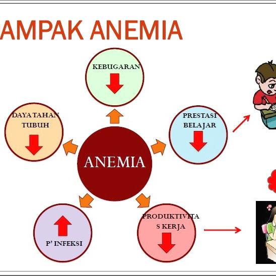 Anemiaction, Perlawanan Terhadap Anemia Agar Hidup Lebih Produktif