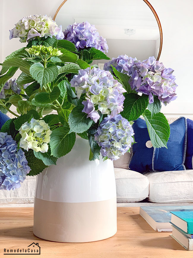 blue hydrangeas in living room - round mirror