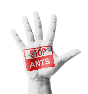 Stop ants sign.
