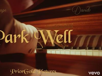 "[Video] Tiwa Savage – ""Park Well"" ft. Davido"