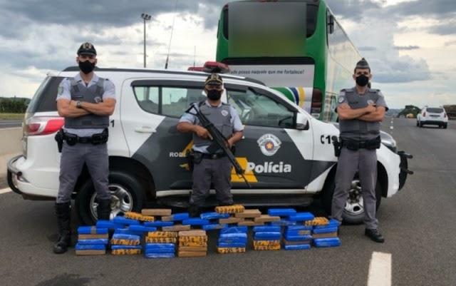 Passageiro de ônibus com destino a Castelo do Piauí é preso em São Paulo com 60 tabletes de maconha