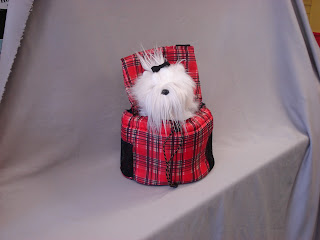 front pocket carrier with stuffed dog