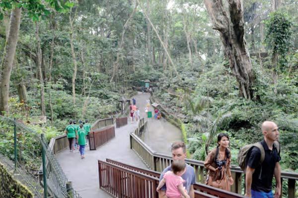 Monkey Forest Candi Pura Dalem Agung Padangtegal