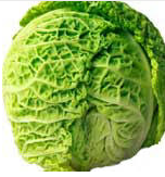 Nutritional contents of cabbage