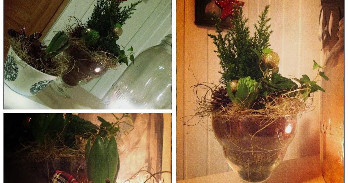 Kukkia Ja Sidontaa