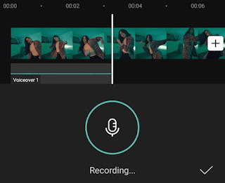 how to add voiceover to video