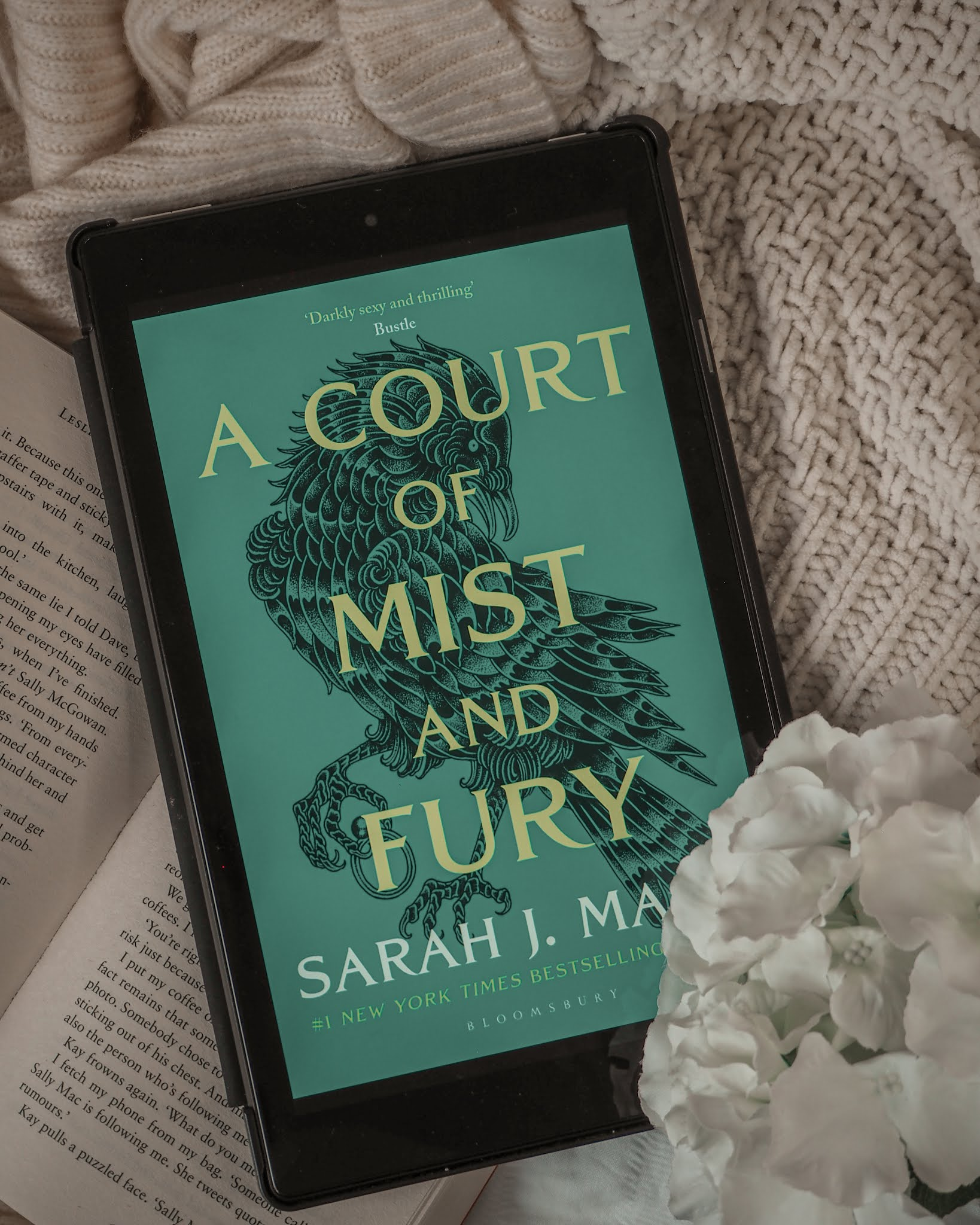 A Court of Mist and Fury Book