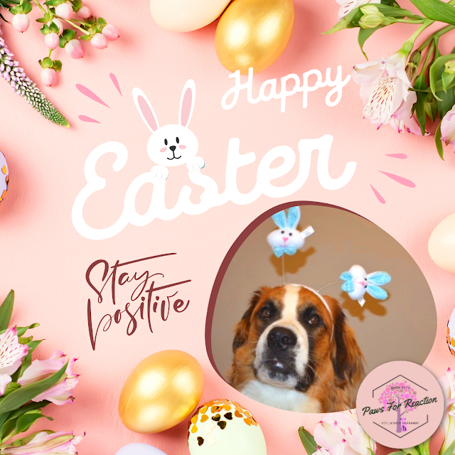 Happy Easter from Paws For Reaction