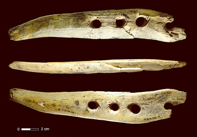 40,000-Year-Old Rope-Making Tool discovered in Germany