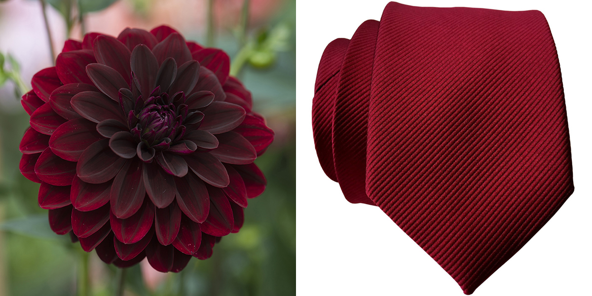 Garnet Red Tie and Dahlia