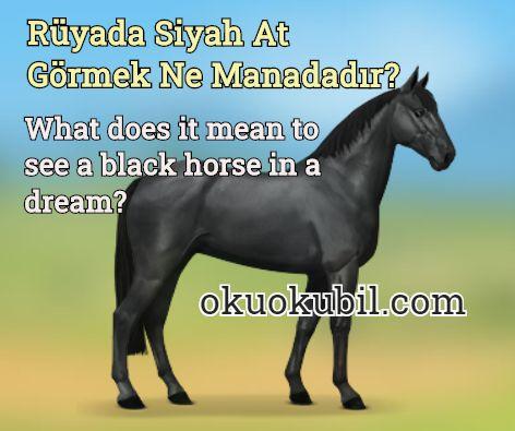 Rüyada Siyah At Görmek Ne Manadadır?