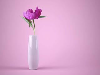 memilih-bunga-potong-yang-segar.jpg