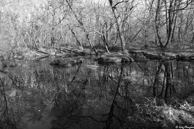 Mare à la Ricarde, Recloses, Pays de Fontainebleau