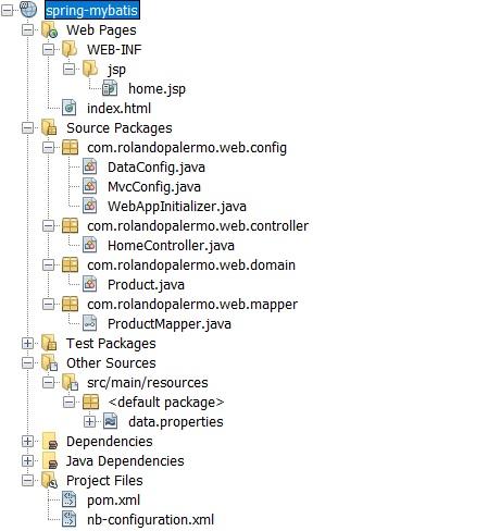RolandoPalermo :: : Spring 4 and MyBatis Java Full Annotations