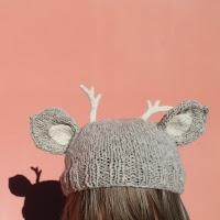 https://laukkumatka.blogspot.fi/2015/03/sarvipaa-antlers.html