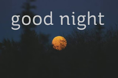 good night wishes for sister