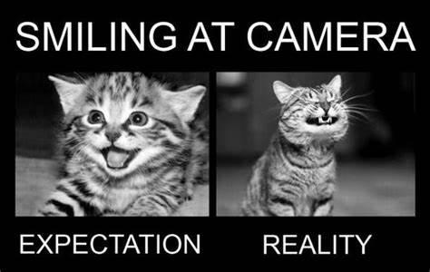 Smiling at camera • Expectation and reality