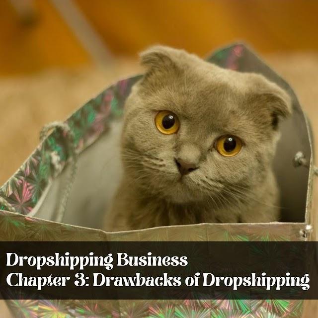 Dropshipping Business  Chapter 3: Drawbacks of Dropshipping