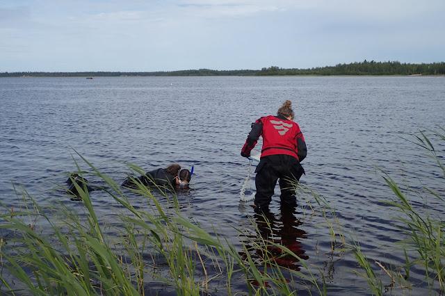 Kartoittaja vedessä snorkkelin kanssa, toinen seisoo vieressä polvivedessä ja kirjaa havainnot ylös.