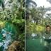 Kolam Wak Jowo : Kolam Mata Air Bening di Sei Binggai Langkat