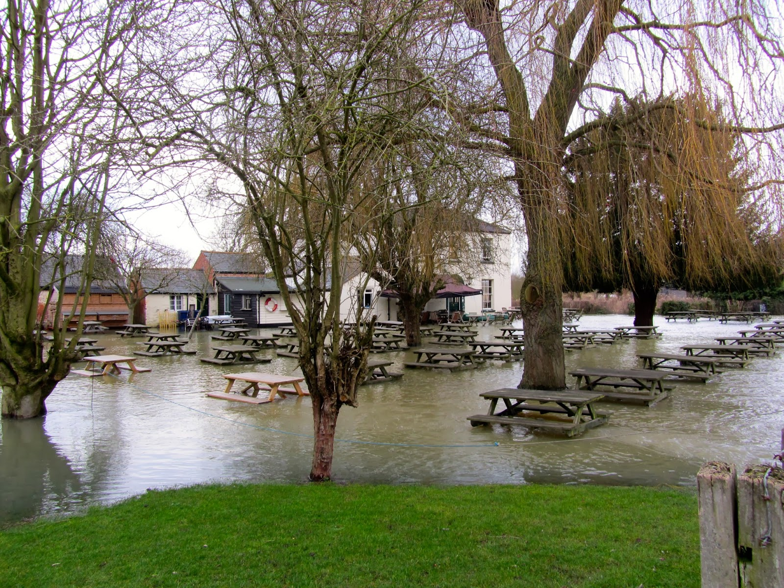 Isis Farmhouse Oxford Curiouser And Curiouser Oxford Under Water