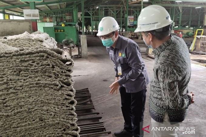 Diarsipkan: Harga karet tingkat pabrik di Kalbar capai Rp18.700 per kilogram