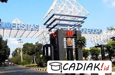Alur Pemberian Beasiswa Di Universitas Diponegoro Semarang