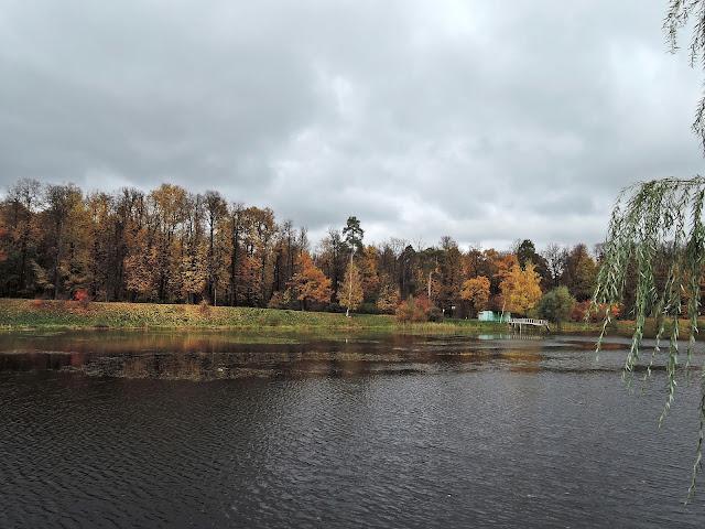 Золотая осень. Лосиный остров.