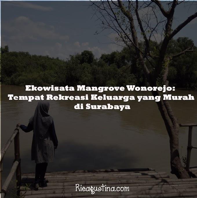 Ekowisata Mangrove Wonorejo:  Tempat Rekreasi Keluarga Yang Murah                                                                                                                                                                      di Surabaya