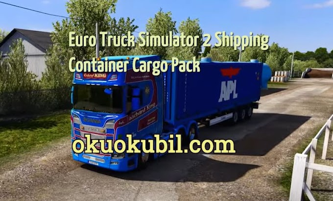 Euro Truck Simulator 2 Shipping Container Cargo Pack + AI Traffic v2.2 Mod İndir 2020