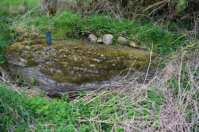 The Wart Stone_Offaly